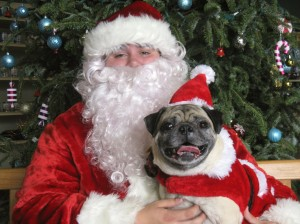 My visit with Santa