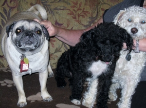 Here I am with cousins Giovanni and Isabella when mom and I drove to Fort Worth last Spring